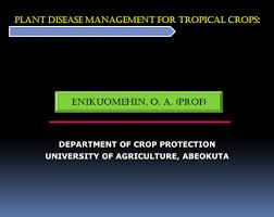 Tropical Plant Diseases - plant disease management for tropical crops department of crop
