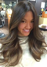 hair highlight for asian photos highlights for black asian hair women black hairstyle pics