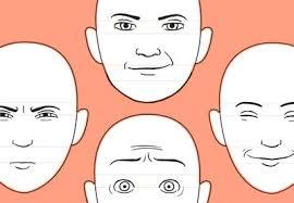 Cartoon Human Anatomy Human Anatomy Fundamentals Mastering Expressions