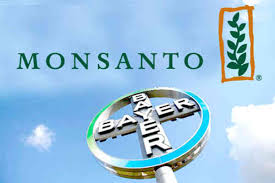 Seeking Bayer Cade Gives Its Ok To Bayer S Takeover Of Monsanto Brazilmonitor