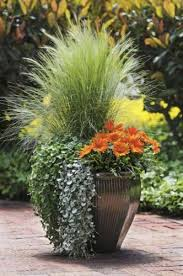 Outdoor Container Gardening Ideas Small Space Gardening Big Container Garden Ideas