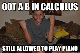 Calculus Meme - got a b in calculus still allowed to play piano successful asian