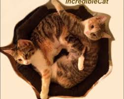 Modern Cat Bed Furniture by Wool Cat Bed Cat Pouf Modern Cat Furniture Pet Bed Luxury