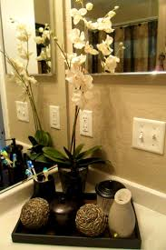 Office Bathroom Decorating Ideas Apartments Good Looking Ideas About Small Bathroom Decorating