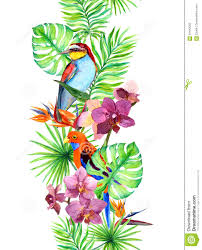 Exotic Colors by Tropical Leaves Exotic Parrot Bird Orchid Flowers Seamless