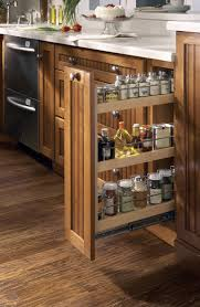 Spice Cabinets With Doors Shelves Sensational Cabinets Drawer Borwn Kitchen Organizer Pull