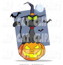 picture of halloween cats royalty free halloween stock cat designs