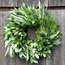 bay leaf wreath fresh bay leaf wreath