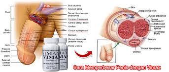 obat pembesar alat vital jual vimax asli obat pembesar penis