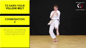 train at home combinations grading to 9th kyu yellow belt