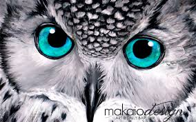 owl paintings black and white