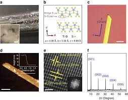 unusual lattice vibration characteristics in whiskers of the