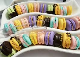 macarons bakery feast your on delectable macarons and more sweet treats at