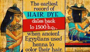 henna hair wiki nutrisse permanent hair color darkest brown 30 1