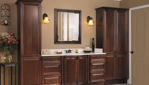 bathroom cabinet ideas storage bathroom cabinet storage ideas exitallergy