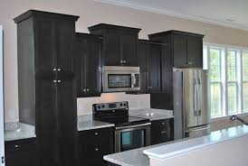 Black Kitchen Cabinets Wonderful Matte Black Kitchen Cabinet Modern Cabinets Pictures