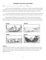 ecological succession worksheet ecological succession worksheet