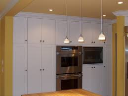 built in cabinet for kitchen modern concept built in cabinets kitchen with coloured lacquer