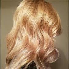 golden apricot hair color blonde hair color trends ideas matrix