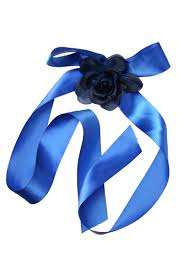 sash ribbon ribbon and sash