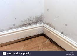 Skirting For Laminate Flooring Skirting Boards Stock Photos U0026 Skirting Boards Stock Images Alamy
