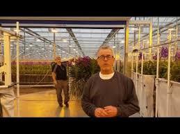 Wholesale Floral Centerpieces by 18 Best Tutorial Videos Mayesh Wholesale Florist Images On