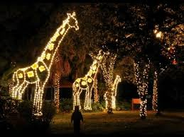 when do the zoo lights start where to see christmas lights in miami and ft lauderdale 2017 axs