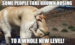 Cowboys Haters Memes - cowboys haters memes imgflip