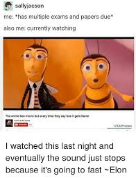 Bee Movie Meme - 25 best memes about the entire bee movie but everytime they