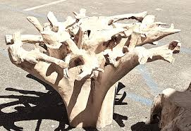 teak root dining table base tables accessory preview inc