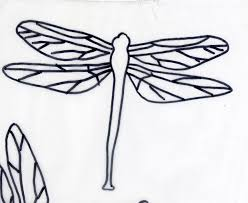 how to draw a cute dragon fly 10 steps with pictures wikihow