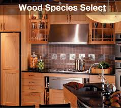 wood types for kitchen cabinets designer kitchen cabinets the builders surplus