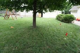 Backyard Golf Course by Backyard Golf Tear Free Onion Cutting U0026 Other Random Friday Takes