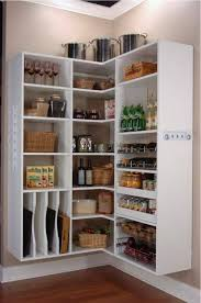 Kitchen Pantry Design Ideas by Open Kitchen Pantry Ideas Video And Photos Madlonsbigbear Com