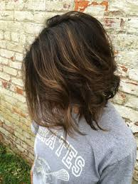long brown hairstyles with parshall highlight 40 partial balayage looks herinterest com