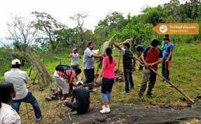eco activities in sydney sydney chikmagalur eco trail team building thrillophilia