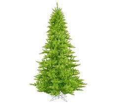 3 x25 lime fir tree with mini lights