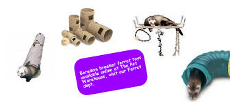 Ferret Hutches And Runs Choosing Housing For A Ferret Hutches And Cage Advice Pet Warehouse