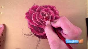 draw rose colored pencils