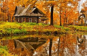 forests reflection house trees peaceful foliage cottage fall