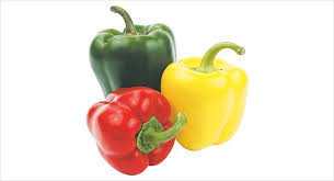 garden variety a guide to growing peppers ljworld com