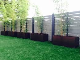 growing bamboo in corten steel planters u2013 nice planter llc