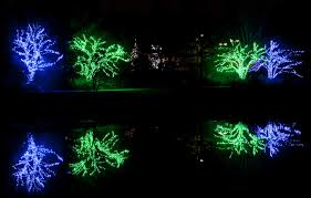 Zoo Lights Hours Chicago by 2016 Holiday Lights Guide Morton Arboretum Flips The Switch Early