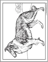 35 dog coloring pages breeds bones dog houses
