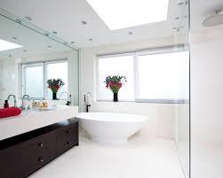 Wall Mirror Bathroom Bathroom Wall Mirrors Mirror Houzz Golfocd
