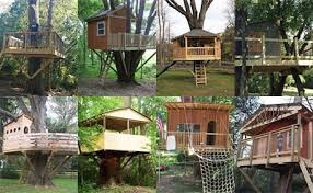 gallery of tree house pictures projects and options portfolio