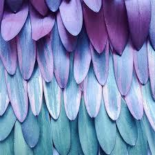 25 unique color patterns ideas on pinterest 2017 fashion color