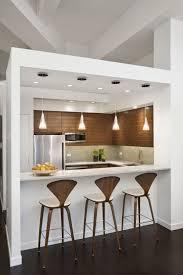 Modern Kitchen Cabinets Nyc City Kitchen Nyc Inspirational Apartment Murdoch Pad New