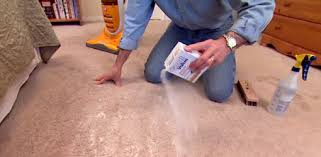 how to spot clean carpet in your home today u0027s homeowner