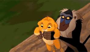 Lion King Meme - the lion king gifs get the best gif on giphy